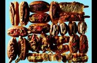 food025