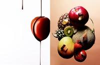 food037