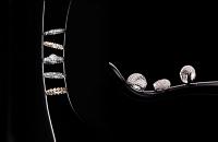 jewelry039
