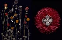 jewelry042