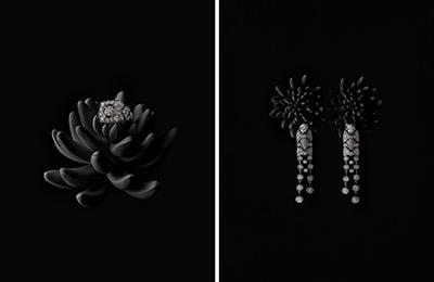 jewelry_1_016