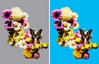 flowers_01102