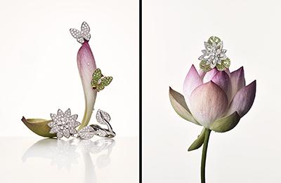 jewelry02_14.jpg t