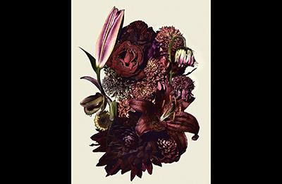flowers_02.jpg t