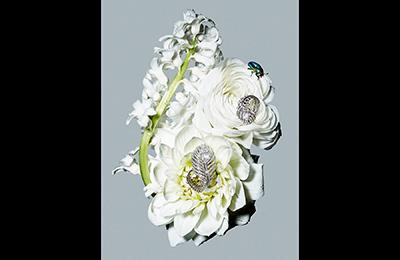 jewelry01_21