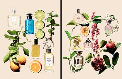 perfume_05